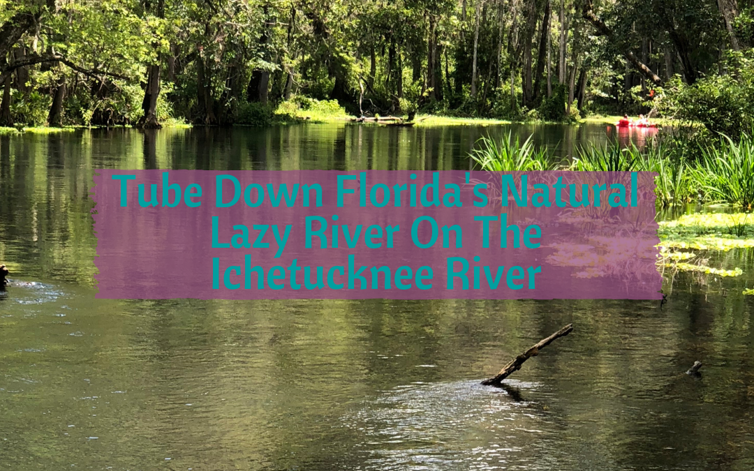 Tube Down Florida's Natural Lazy River On The Ichetucknee River